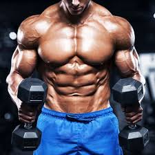 bodybuilding supplement