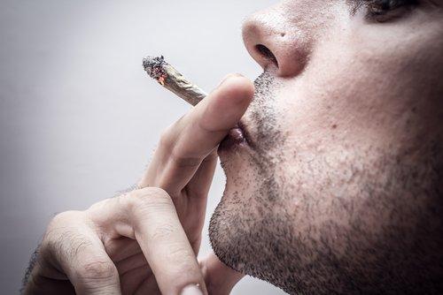 marijuana herb joint